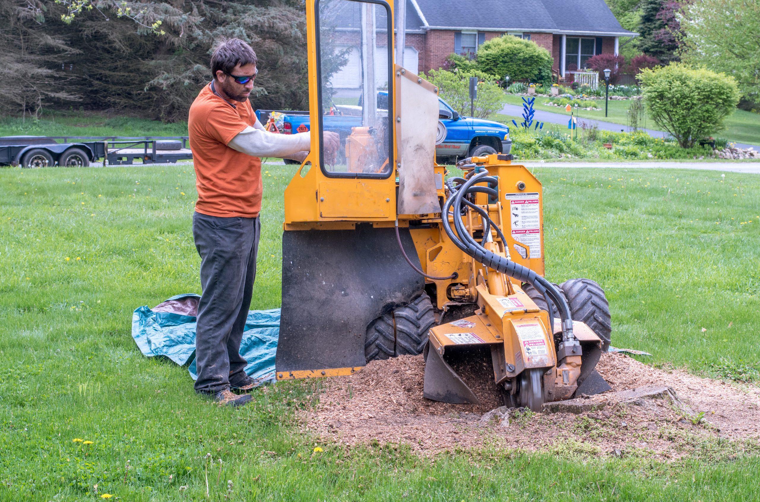 North Little Rock Cabot Sherwood Stump Grinding grinder stumps removal